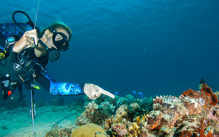 Diving the Gilis