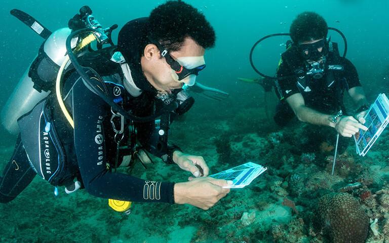 Coral Diver Course