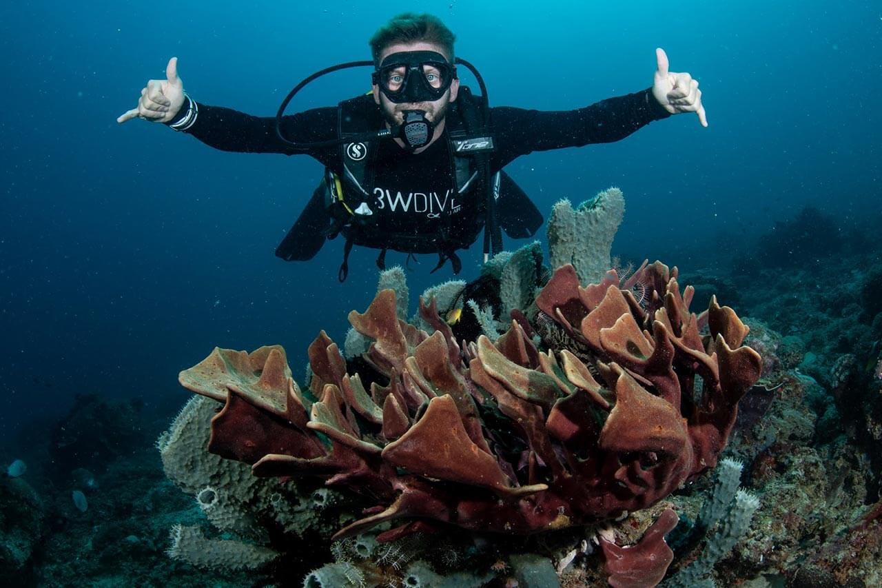 coral-reef-diversity-08